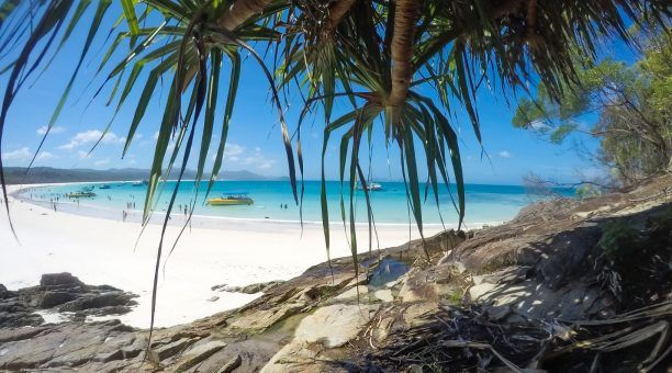 Find that shady spot on Whitehaven Beach